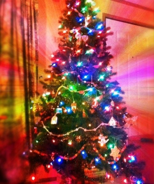 Our Chritstmas Tree