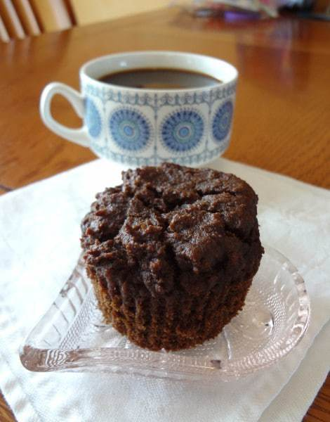 Chocolate Chocolate-Chip Muffins