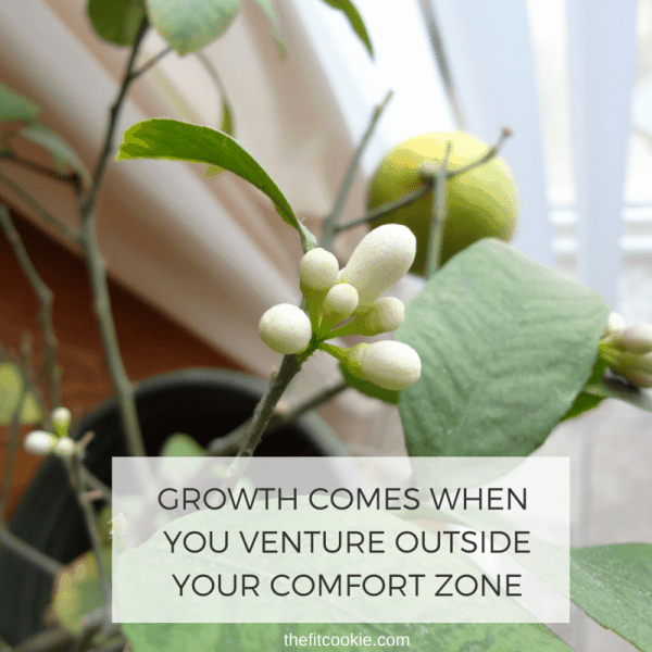 Photo of lemon blossoms with a quote about growth overlaid