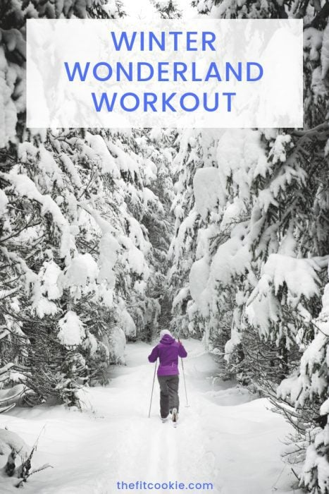 Don't hibernate in the winter! Keep moving through the winter months with the Winter Wonderland Workout you can do anywhere! - @TheFItCookie #winter #workout #fitness