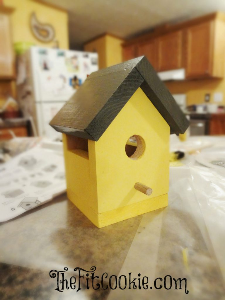 The Home Depot DIY Birdhouse Kit