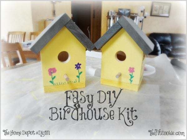 Easy DIY Birdhouse Kit Project