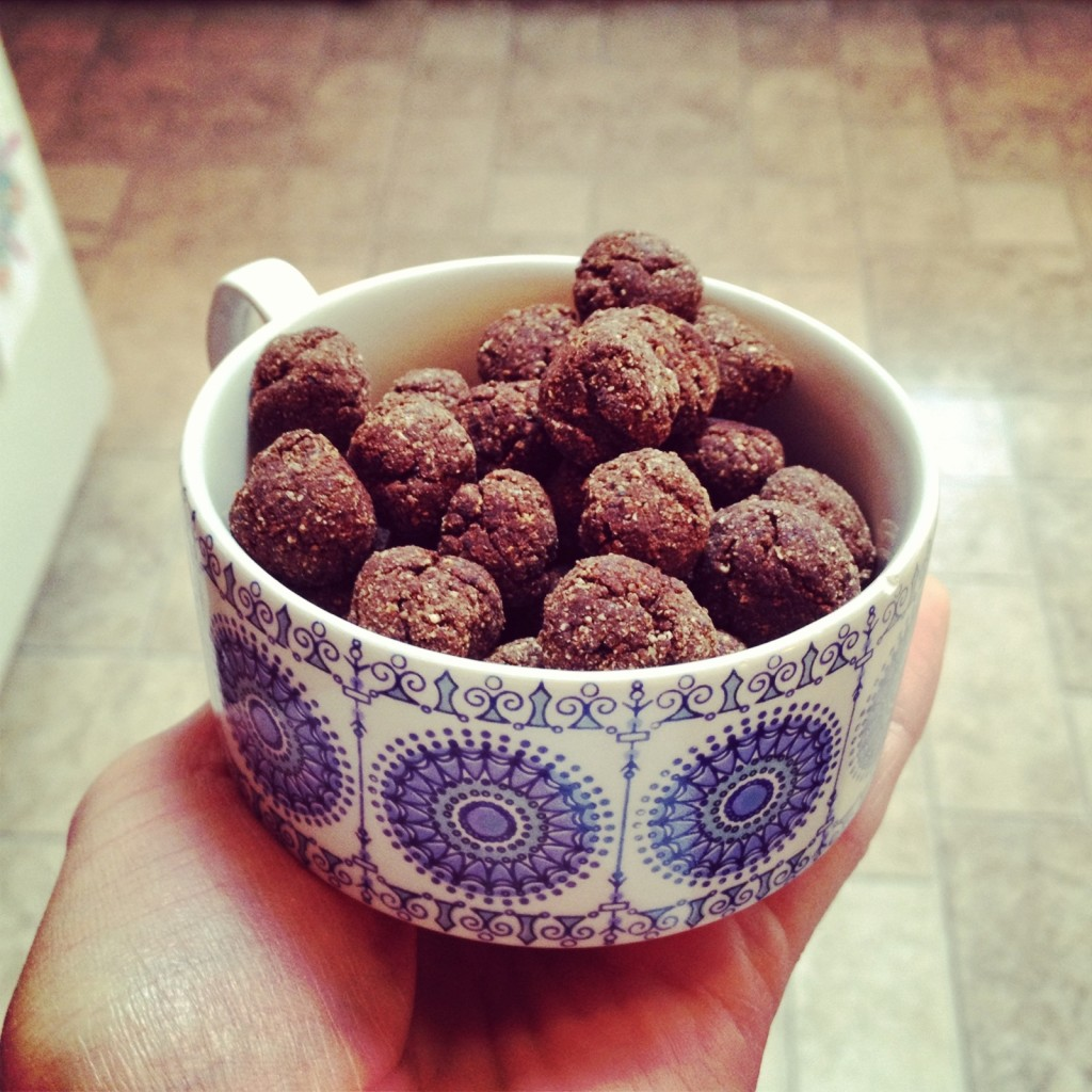 Homemade Cocoa Puff Cereal, Grain Free (from Purely Twins recipe) - TheFitCookie.com
