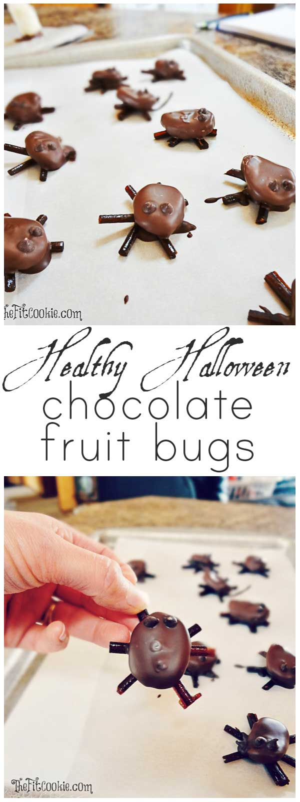 "Make up your own healthy halloween candy with these fun treats that are also allergy friendly! These Chocolate Fruit ""Bugs"" are gluten free, peanut free, vegan, and easy to make! - @TheFitCookie #Halloween #dairyfree #glutenfree"