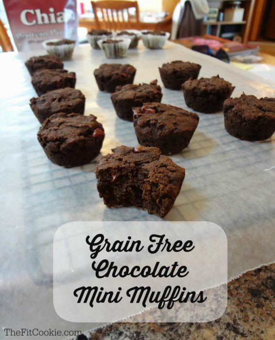 Grain Free Chocolate Mini Muffins - The Fit Cookie