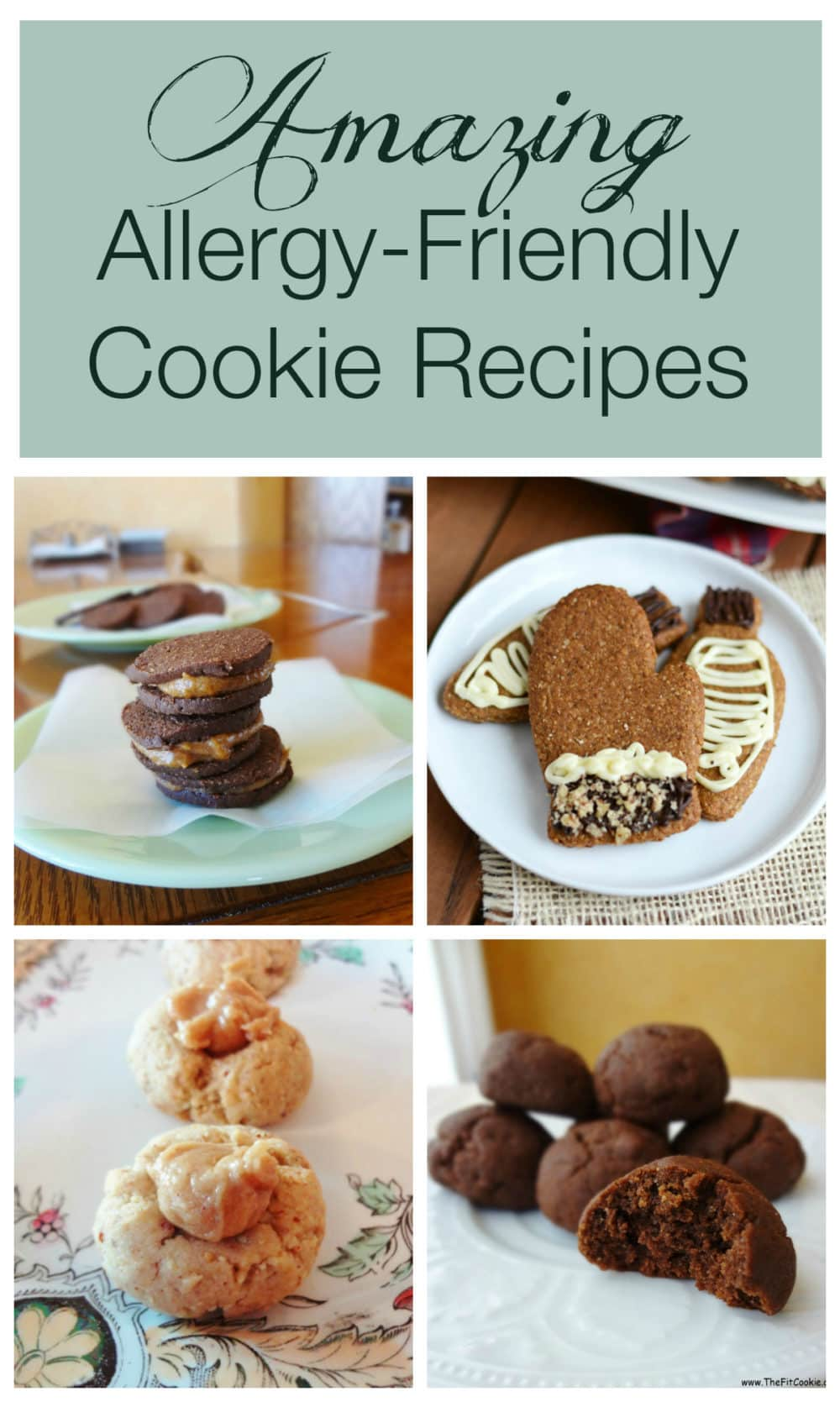 50 Allergy Friendly Cookie Recipes The Fit Cookie