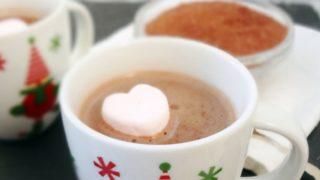 Dairy Free Hot Cocoa Mix (Vegan)