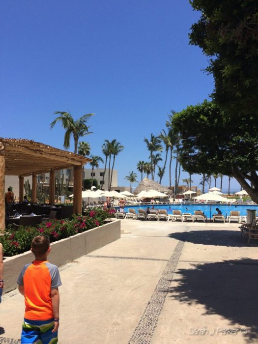 TFC Travels: San José del Cabo http://wp.me/p2Bw44-4DS #travel @TheFitCookie #Mexico #vacation
