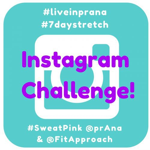 Stretch Your Body & Soul - @TheFitCookie #ad #sweatpink @FitApproach @prAna #liveinprana #7daystretch