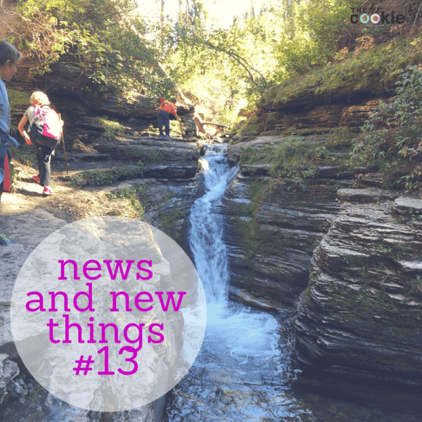 News and New Things #13 (and #Giveaway!) - @thefitcookie @brightlifego #fitness #fitfluential