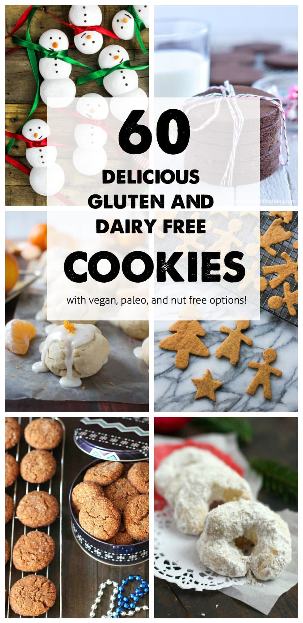 It's been a fun and challenging year, but we've learned a lot along the way! Here's a look at The Fit Cookie's top 10 posts for the year, including this allergy friendly cookies roundup! - @TheFitCookie #cookies #dairyfree #recipe