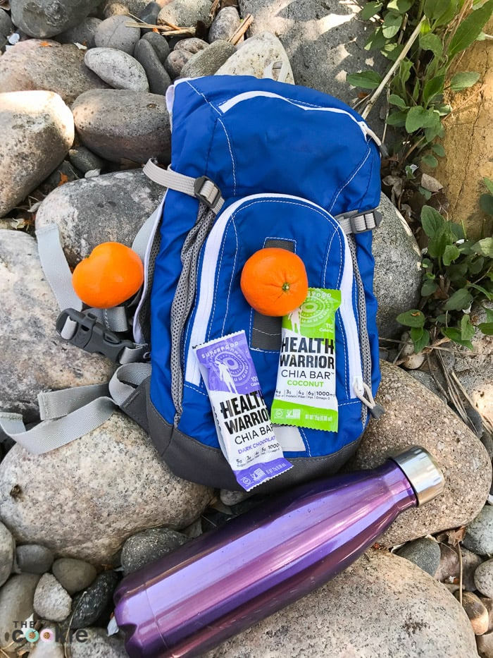 Whether you're at the beach, the pool, going hiking, or heading to work, you can stick with your healthy eating plan with these healthy packable snack ideas for summer! Sponsored by @HealthWarrior #HealthWarriorWay
