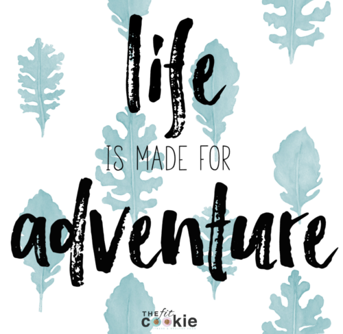 Life is made for adventure! We were created to explore - @TheFitCookie