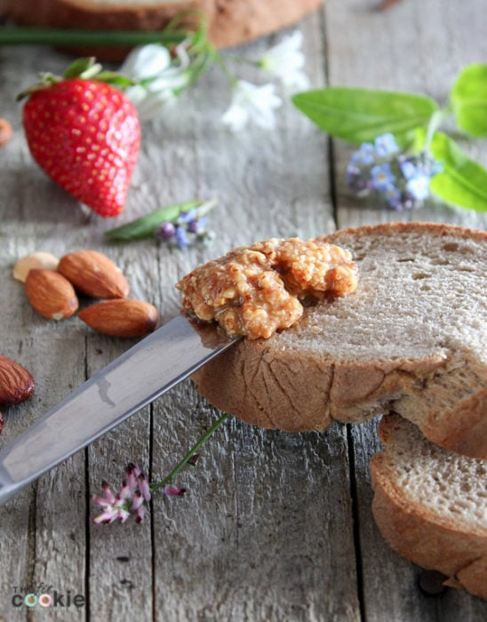 Step aside, peanut butter, this Homemade Honey Almond Butter is perfectly delicious! Crunchy, salted, roasted almond spread made with a sweet hint of honey, and it's naturally gluten free and paleo - @TheFitCookie #recipe #paleo #glutenfree