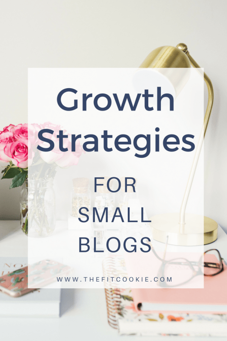 "image of a desk with flowers and lamp overlaid with text ""growth strategies for small blogs"""