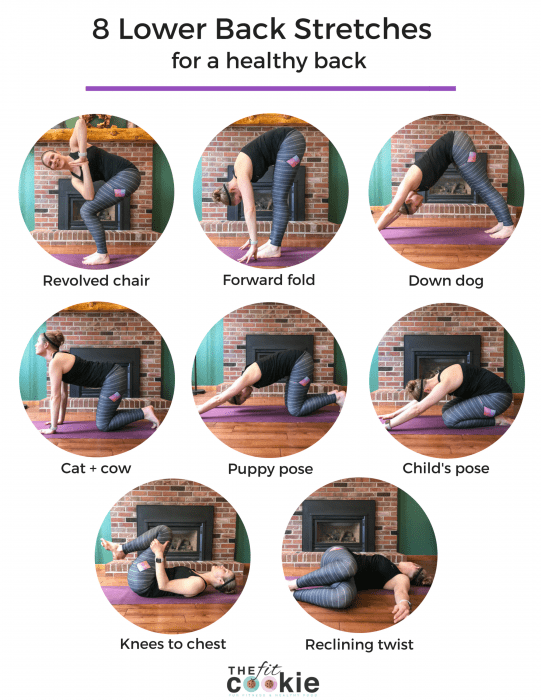 image collage of 8 lower back stretches for a healthy back