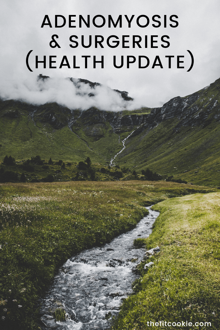If you've been following my health journey, here's a recent update! Here's my health update from this summer about my adenomyosis and surgeries