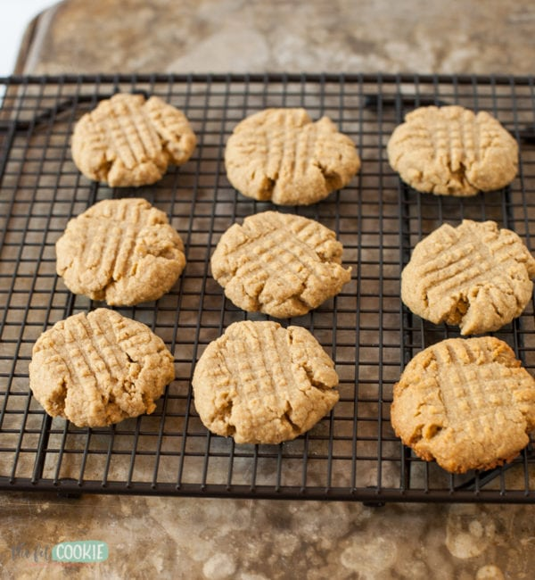 peanut free sunbutter cookies lined up on a cooling rack