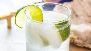 Non-Alcoholic Gin and Tonic Recipe