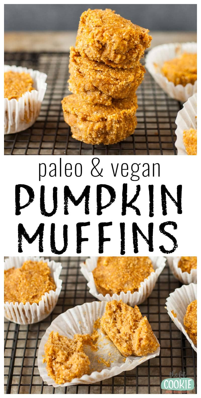 Easy Paleo Pumpkin Muffins (Egg Free) • The Fit Cookie