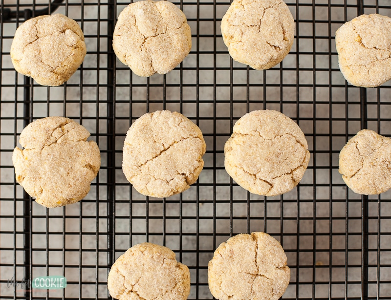 overhead photo of keto sugar cookies