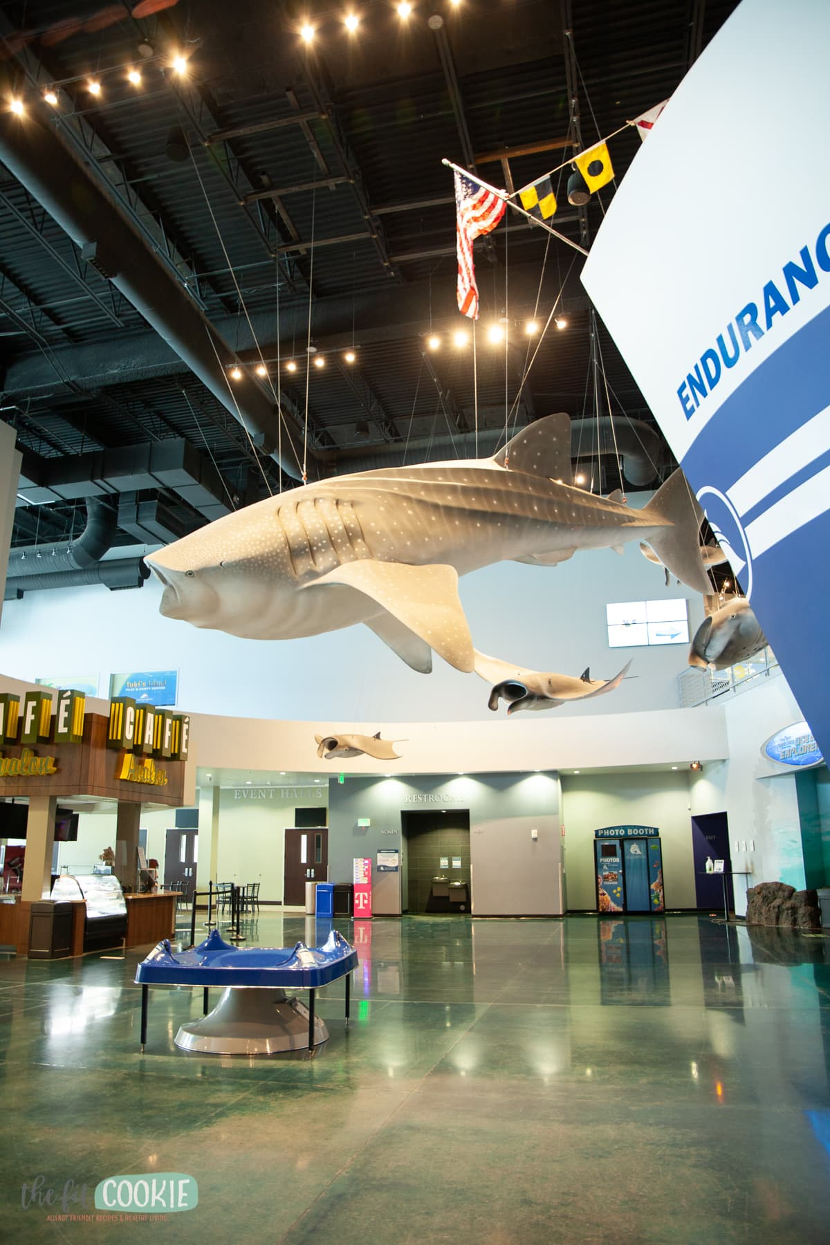 life size model of whale shark