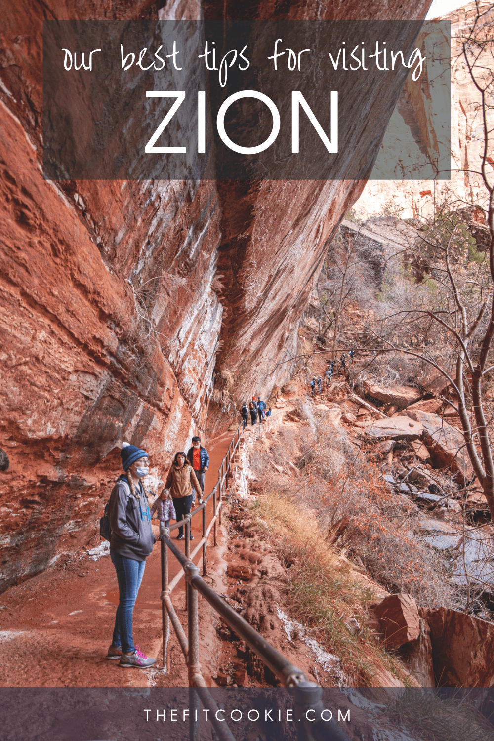photo of the lower emerald pools in Zion National Park with text overlay