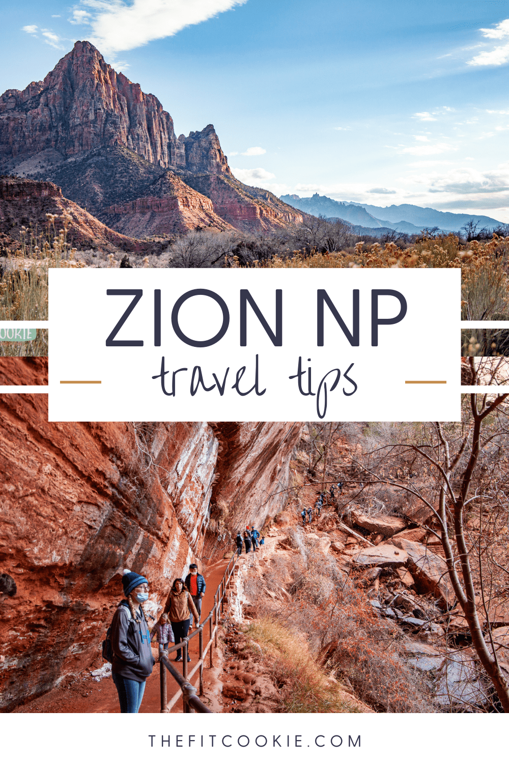 """photo  collage of photos of Zion with text that says """"Zion travel tips"""""""