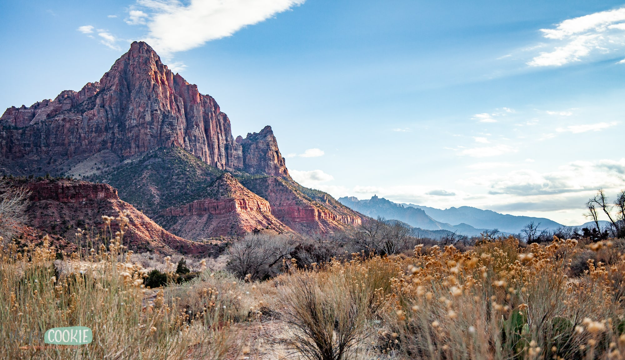 view south from the southern area of Zion Canyon