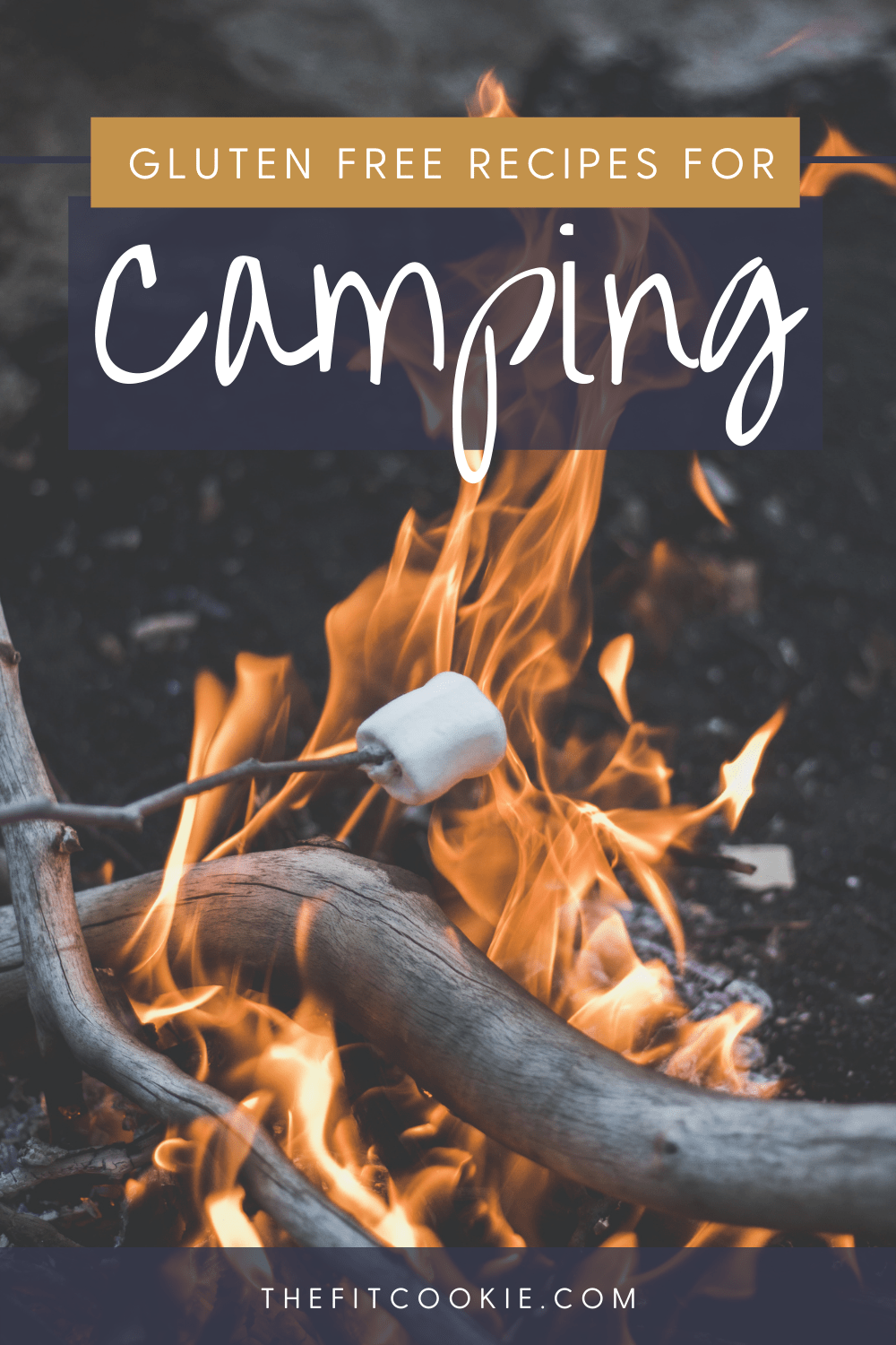 """campfire with marshmallow cooking over it with text overlay that says """"gluten free recipes for camping"""""""
